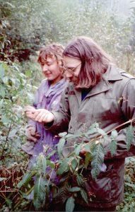 02 - à la recherche de branches de saule