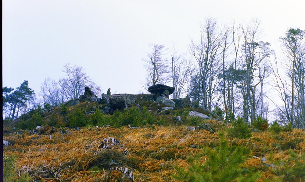 12 - Archie dans les Vosges 1986